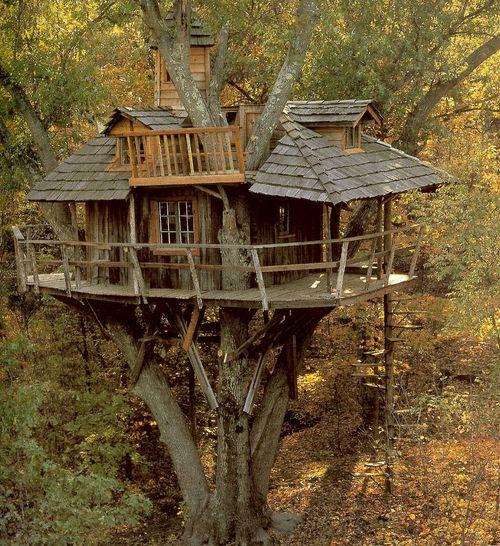 Treehouses002s0oi