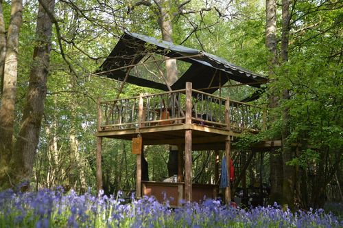 HGC Treehouse HQ