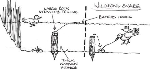 Wildfowl_snare_2